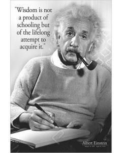 Einstein's Quote On Wisdom Poster